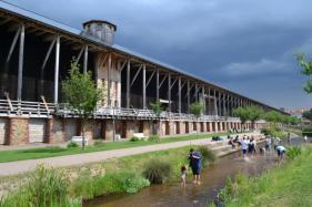 Rijnland, wijnland en Heidelberg : juni 2017